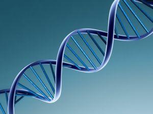 poza ADN